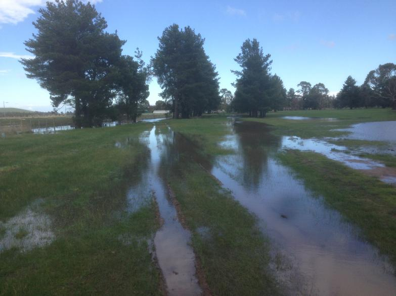 6th Fairway and close rough